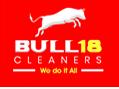 Bull18 Logo