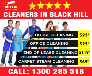 house cleaners Black Hill